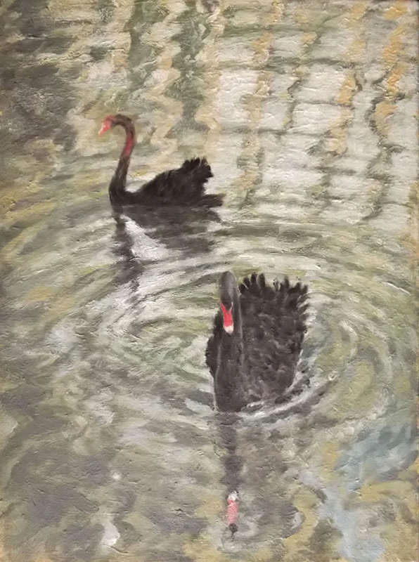 Swans, Oil on Canvas, 40 x 31 cm