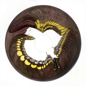 Butterfly Anamorphois, Watercolour, 50 x 50 cm